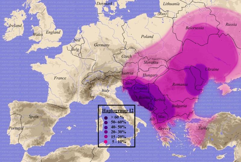 haplogroupi2