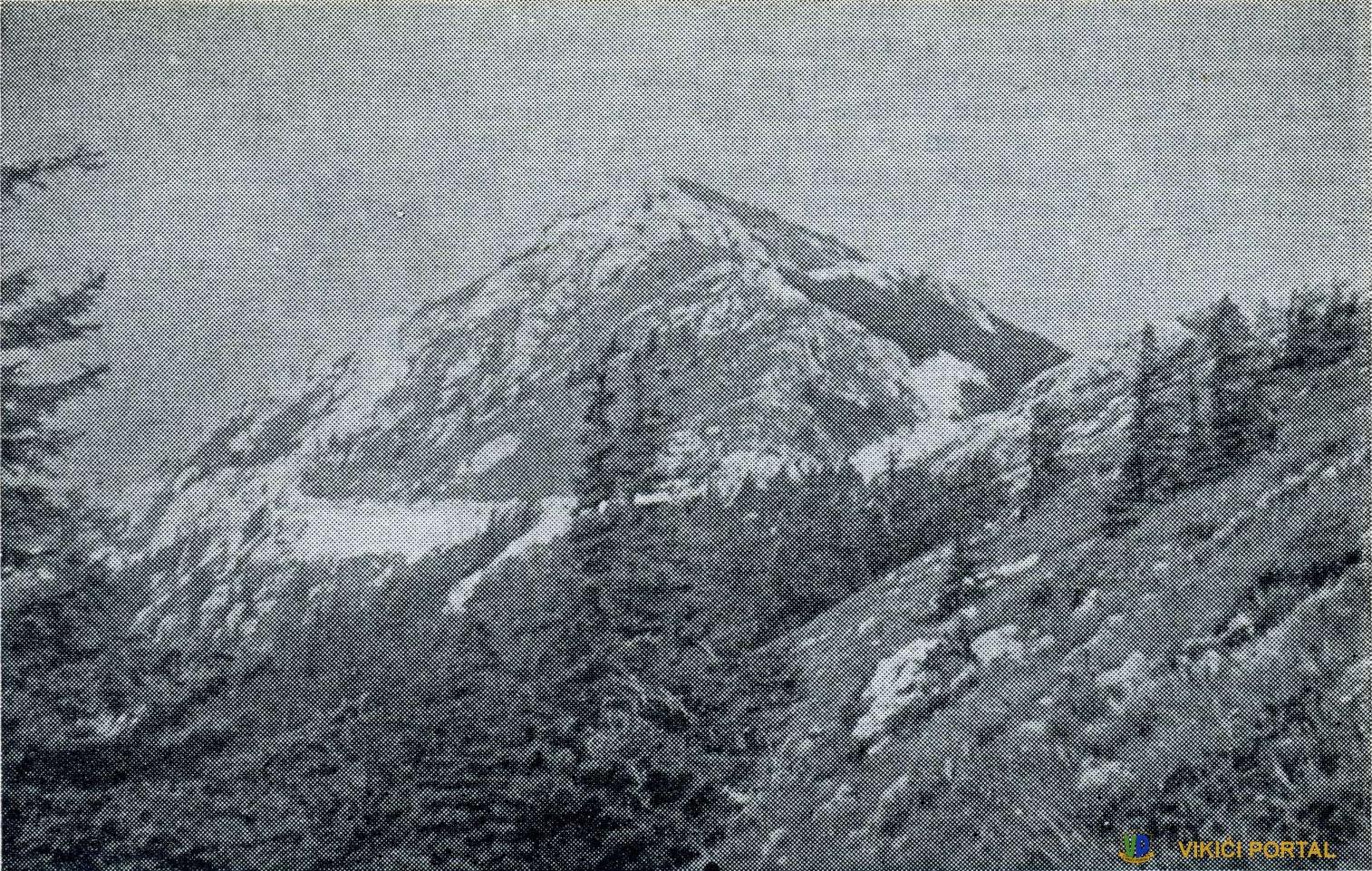 Gola Plješevica (1649 m) sa Male Plješevice