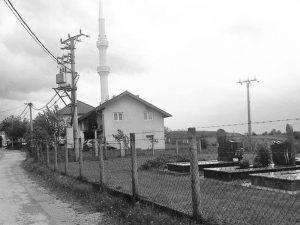 džamija Vikići