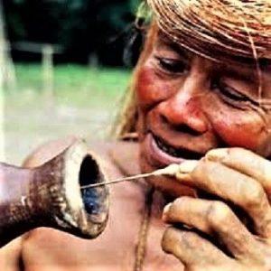 Urođenik namače strijelicu u otrov curare od čijeg uboda nastupa trenutna smrt
