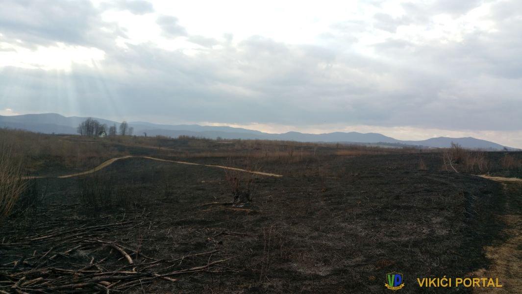 opožareno lovište Čerkezovac na Bugaru